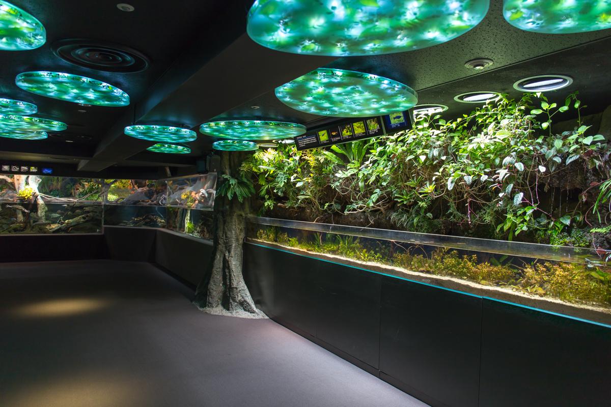 サンシャイン水族館貸切4(2)
