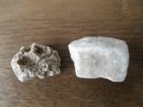 パルテノン石