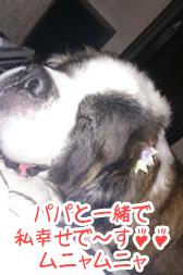 blog_2015_6_11.jpg