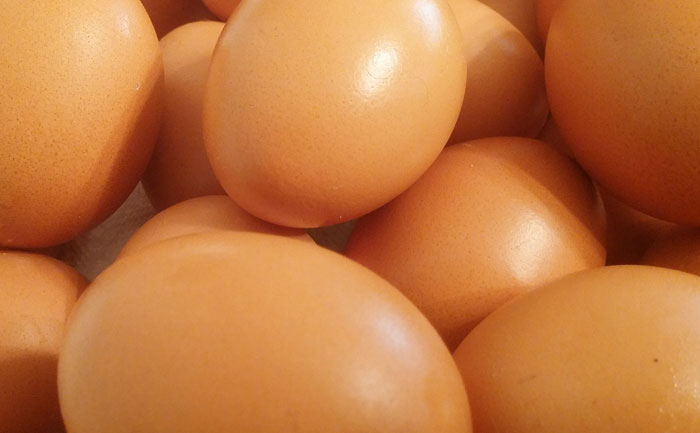 2832卵