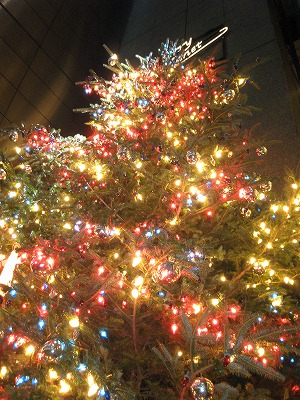 2009-11-29 2009-11-29 001 004.jpg