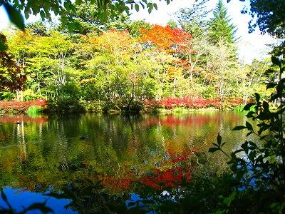 2009-10-11 2009-10-11 001 052.jpg