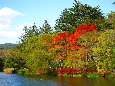 2009-10-11 2009-10-11 001 026.jpg