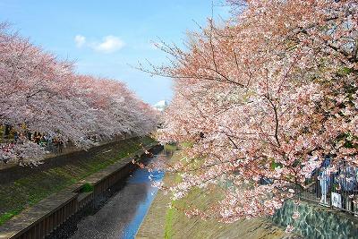 2009-04-04 2009-04-04 002 009.jpg