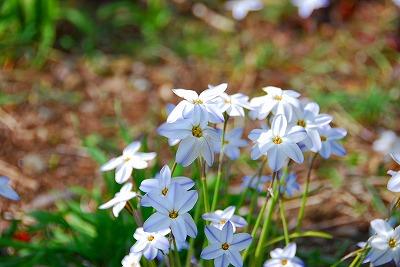 2009-04-04 2009-04-04 002 005.jpg