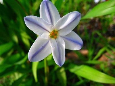 2010-04-03 2010-04-03 001 027.jpg