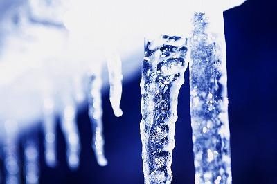 2010-01-01 2010-01-01 002 014.jpg