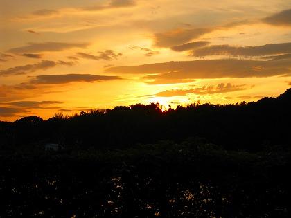 2011-08-19 2011-08-19 002 028.jpg
