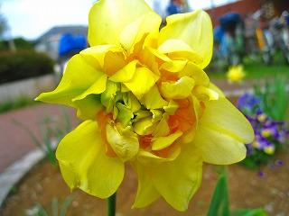 2011-04-10 2011-04-10 001 021.jpg