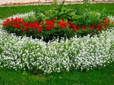 2010-09-01 2010-09-01 001 058.jpg