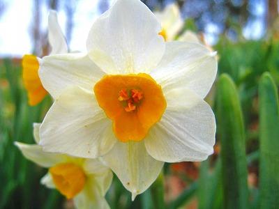 2011-02-05 2011-02-05 001 068.jpg