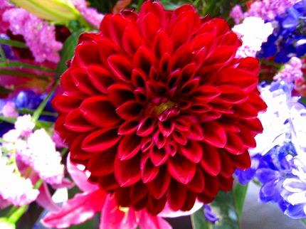 2012-05-04 2012-05-04 001 036.jpg
