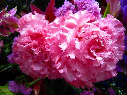 2012-05-04 2012-05-04 001 040.jpg