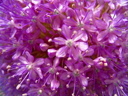 2012-05-04 2012-05-04 001 039.jpg