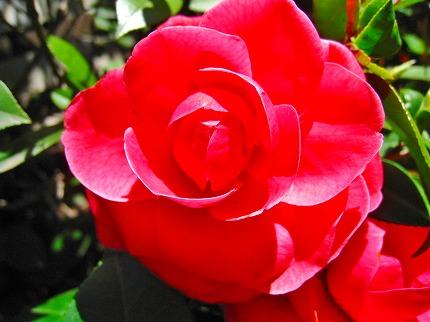 2012-04-04 2012-04-04 001 003.jpg