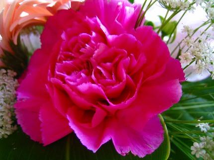 2012-03-19 2012-03-19 001 001.jpg