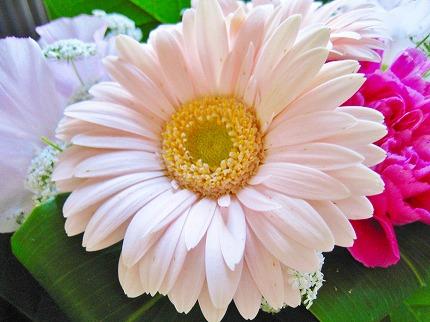2012-03-19 2012-03-19 001 003.jpg