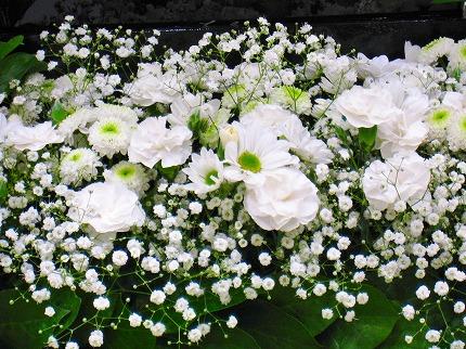 2012-05-04 2012-05-04 001 053.jpg