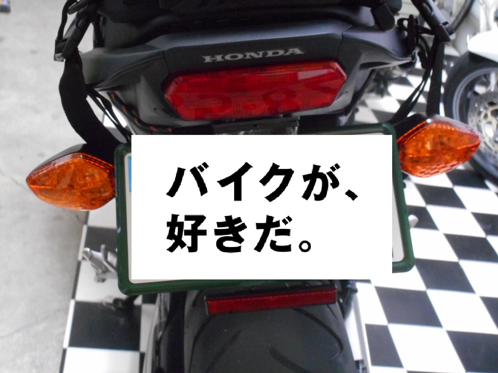 DSCN11683.jpg