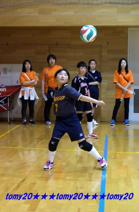 20150517 和田杯(女子) (8)