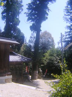 2015_05_11_県道785・島ヶ原_082