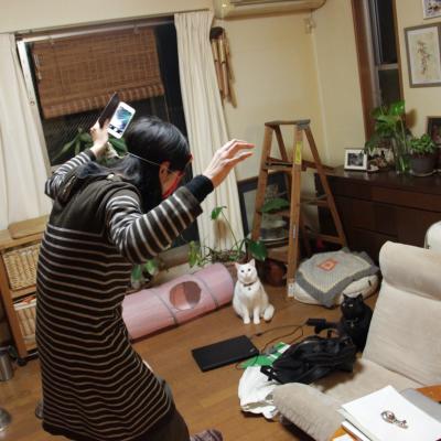 IMG_6982_Fotor.jpg
