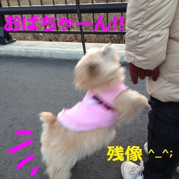 p001散歩