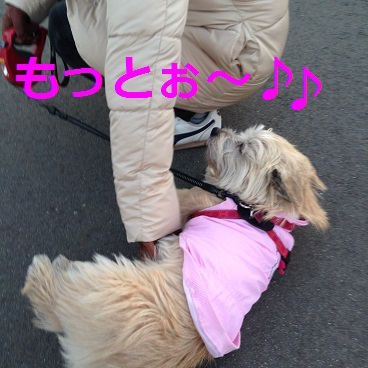 p004散歩