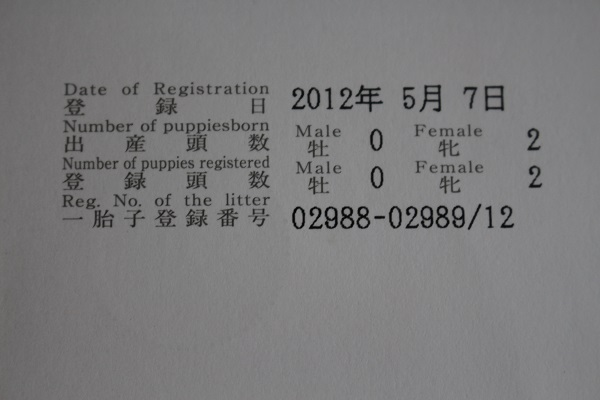 2015.06.26 ぱーるのルーツ-3