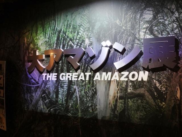 大アマゾン展