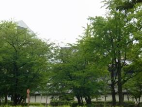 1506-kyoto2.jpg