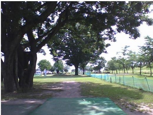 s-東加賀野井パークゴルフ場 (11)