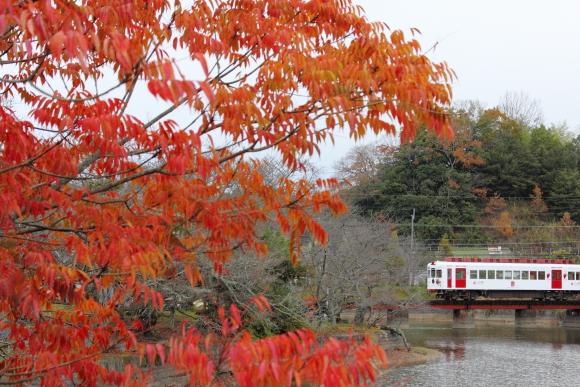 2009年12月下旬 和歌山電鐵 大池遊園