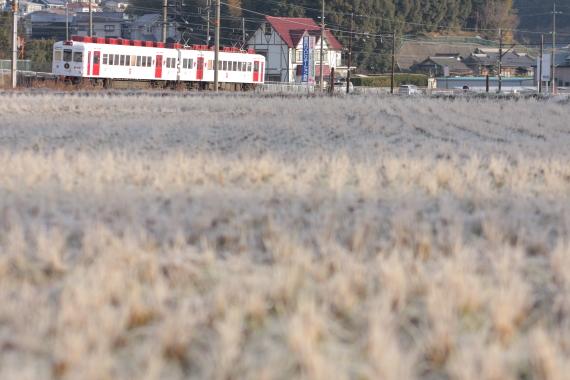 2015/2/7 和歌山電鐵貴志川線 西山口