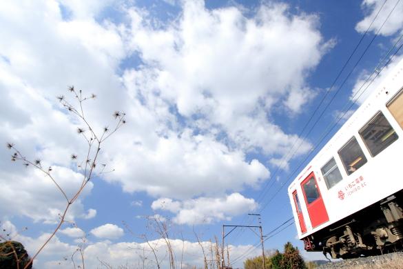 2015/2/14 和歌山電鐵貴志川線 甘露寺前~貴志
