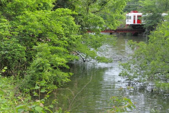 2011年5月 和歌山電鐵貴志川線 大池遊園