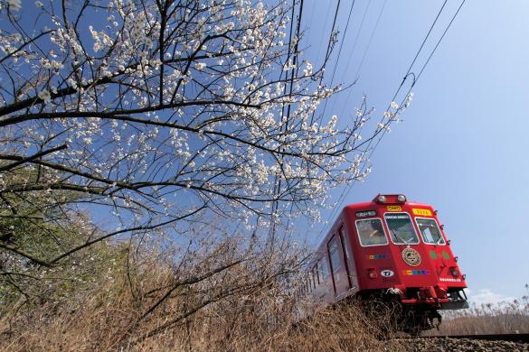 2010年2月 和歌山電鐵貴志川線 伊太祈曽~山東