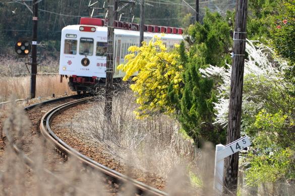 2015/3/28 和歌山電鐵貴志川線 大池遊園~西山口