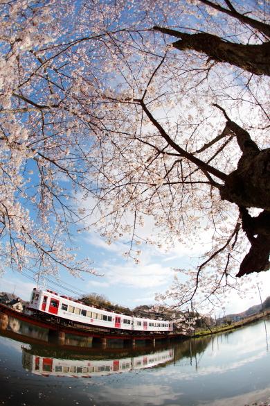 2009年4月 和歌山電鐵貴志川線 大池遊園
