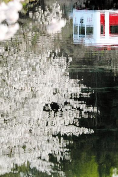 2012年4月 和歌山電鐵貴志川線 大池遊園