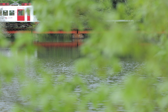 2015/4/21 和歌山電鐵貴志川線 大池遊園