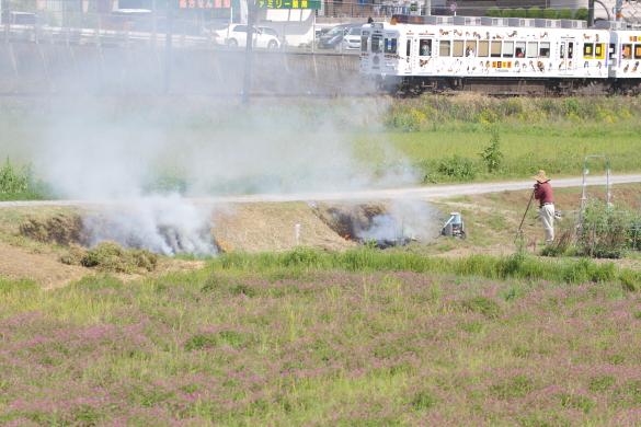 2015/5/2 和歌山電鐵貴志川線 大池遊園~西山口