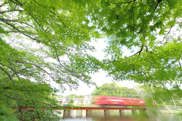 2015/5/2 和歌山電鐵貴志川線 大池遊園