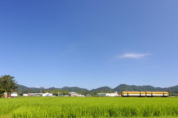 2011年8月 一畑電車北松江線 雲州平田~布崎