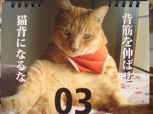 政五郎カレンダー②