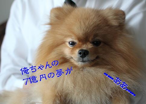 blog20150622-2.jpg
