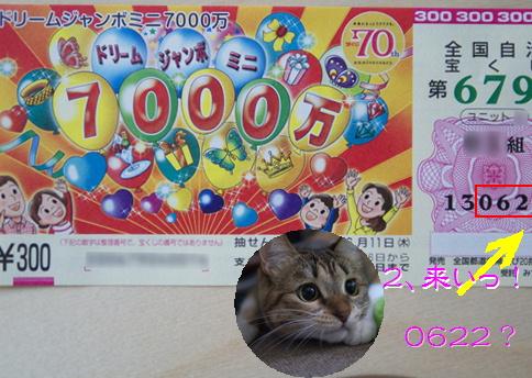 blog20150622-5.jpg