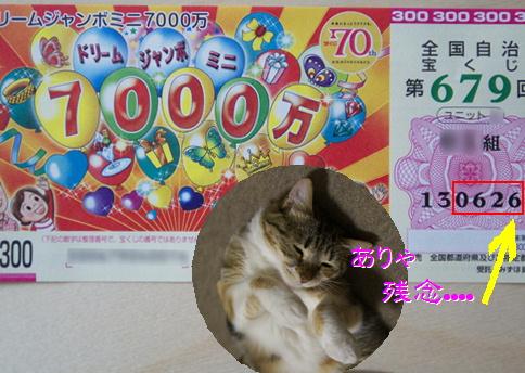 blog20150622-6.jpg