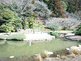 公園20150310