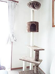 ねこタワー20150615